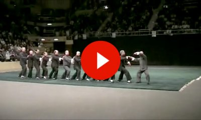 Video Tai Chi Masters Demonstration